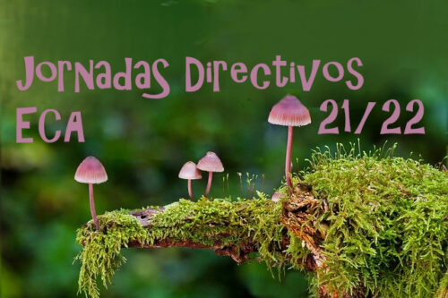 DIRECTIVOS ECA1